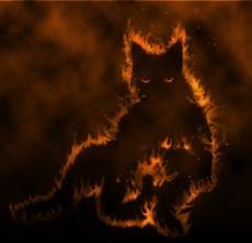Djinn Cat